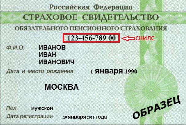 Страховой номер индивидуального лицевого счёта
