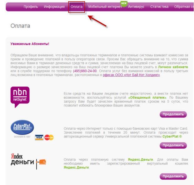 Личный кабинет Нетбайнет - Оплата и обещанный платёж