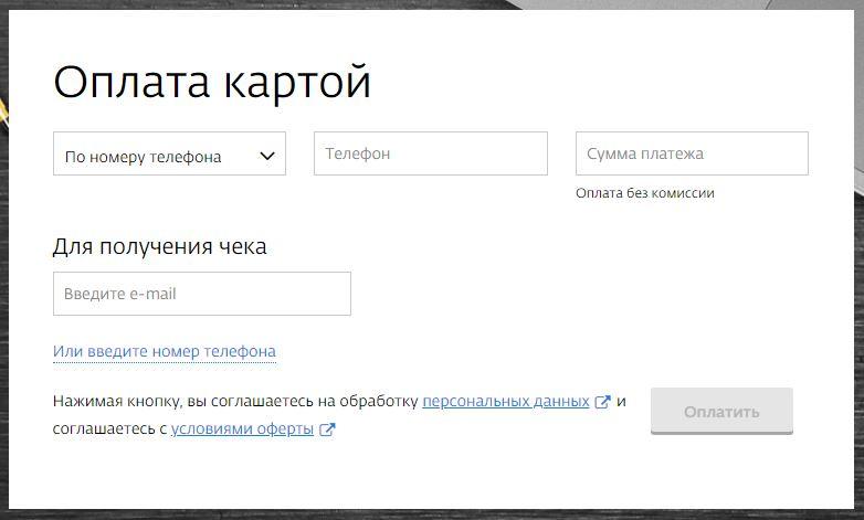Оплата услуг ИнтерЗет СПб банковской картой