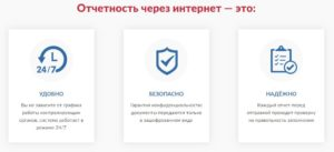 Преимущества подачи отчётности через Интернет (7405405.ru)