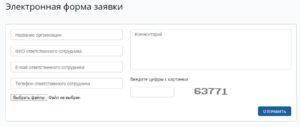 Электронная форма заявки на формирование личного кабинета организации
